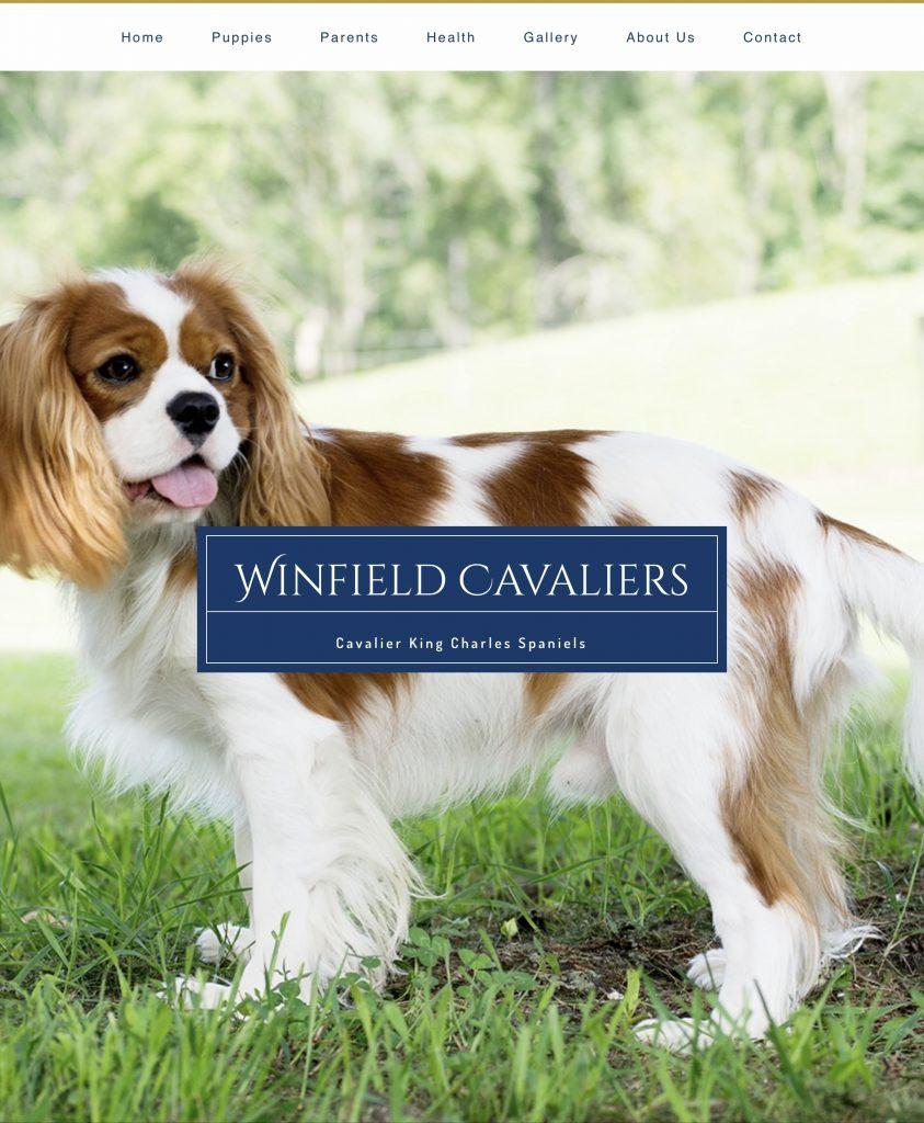 Winfield Cavaliers